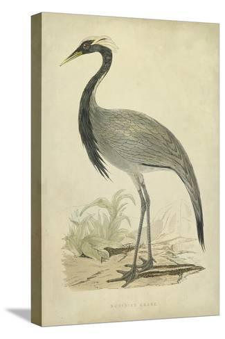 Morris Crane II--Stretched Canvas Print