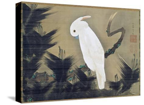 White Cockatoo on a Pine Branch-Ito Jakuchu-Stretched Canvas Print