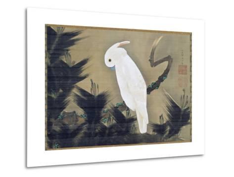 White Cockatoo on a Pine Branch-Ito Jakuchu-Metal Print
