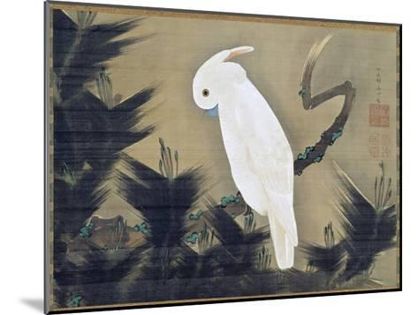 White Cockatoo on a Pine Branch-Ito Jakuchu-Mounted Giclee Print