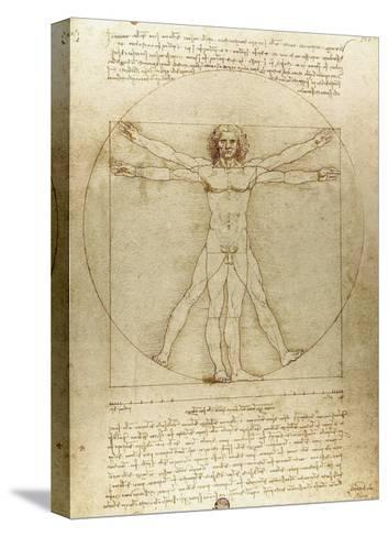 Vitruvian Man (Canon of Proportions)-Leonardo da Vinci-Stretched Canvas Print