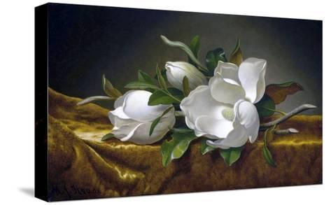 Magnolias on Gold Velvet Cloth-Martin Johnson Heade-Stretched Canvas Print