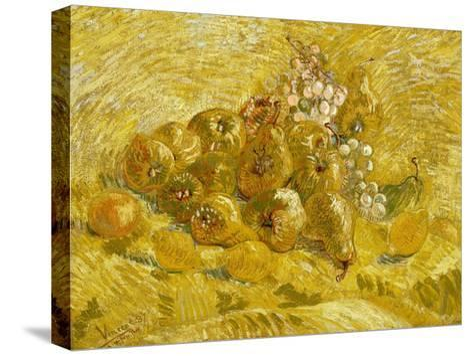Quinces, Lemons, Pears and Grapes-Vincent van Gogh-Stretched Canvas Print