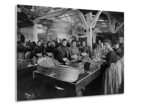 Women Canning Oysters--Metal Print