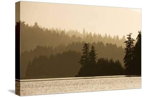 Summer Sunset Lights Rainforest Along Afognak Bay-Paul Souders-Stretched Canvas Print
