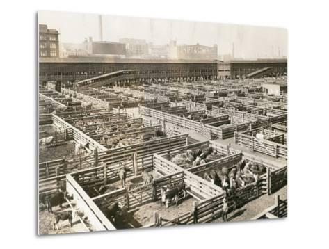 Overhead View of Chicago Stockyards--Metal Print