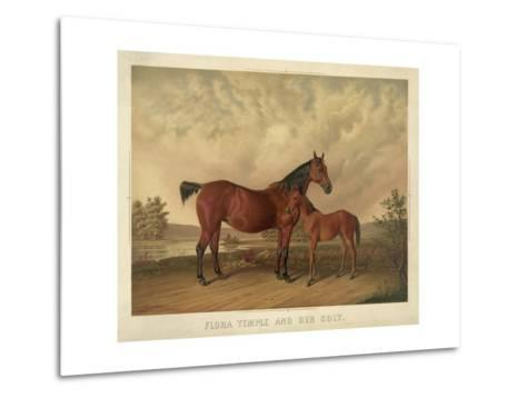 Flora Temple and Her Colt--Metal Print