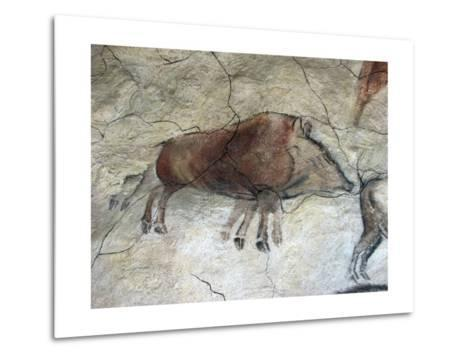 Replica of Cave Painting of Boar from Altamira Cave--Metal Print