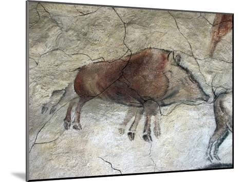Replica of Cave Painting of Boar from Altamira Cave--Mounted Giclee Print