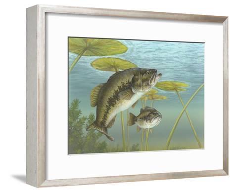 Largemouth Bass--Framed Art Print