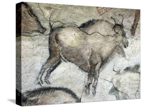 Replica of Cave Painting of Bison from Altamira Cave--Stretched Canvas Print