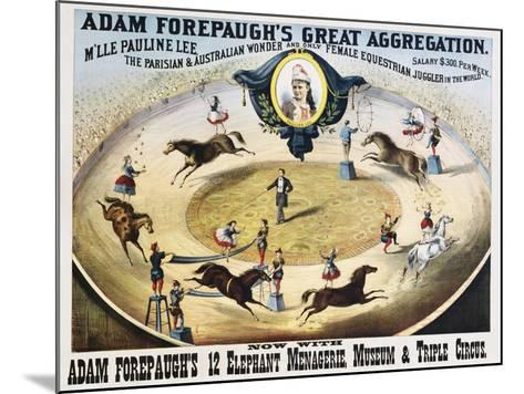 Adam Forepaugh's Great Aggregation Poster--Mounted Giclee Print