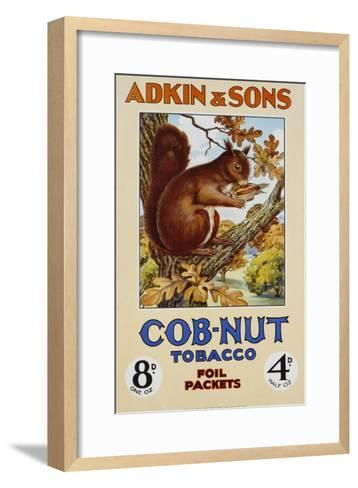 Adkin and Sons: Cob-Nut Tobacco Foil Packets Poster--Framed Art Print