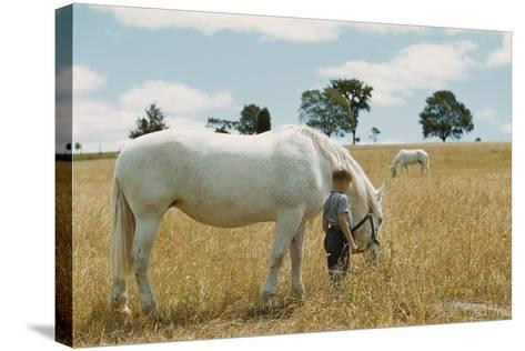 Boy Standing with Horse in a Field-William P^ Gottlieb-Stretched Canvas Print