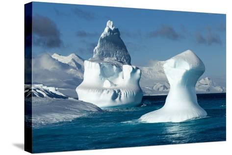 Iceberg, South Shetland Islands, Antarctica-Paul Souders-Stretched Canvas Print