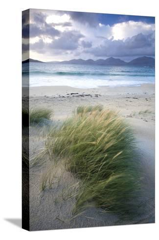 Beach at Luskentyre with Dune Grasses Blowing-Lee Frost-Stretched Canvas Print