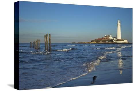 St. Marys Lighthouse, Whitley Bay, North Tyneside, Tyne and Wear, England, United Kingdom, Europe-Peter Barritt-Stretched Canvas Print