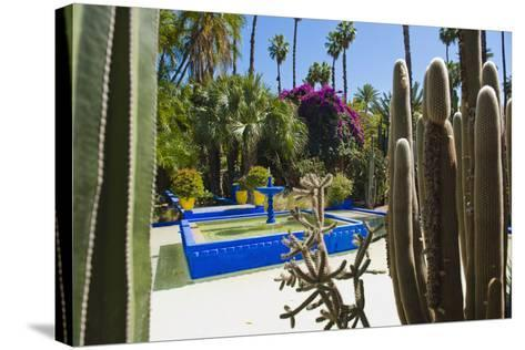 Blue Fountain and Cactus in the Majorelle Gardens (Gardens of Yves Saint-Laurent)-Matthew Williams-Ellis-Stretched Canvas Print