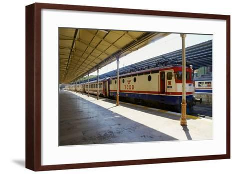 Sirkeci Gar (Central Railway) Railway Station Former Terminal Stop of the Orient Express-Simon Montgomery-Framed Art Print