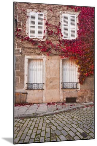 Autumn Leaves in Noyers-Sur-Serein-Julian Elliott-Mounted Photographic Print