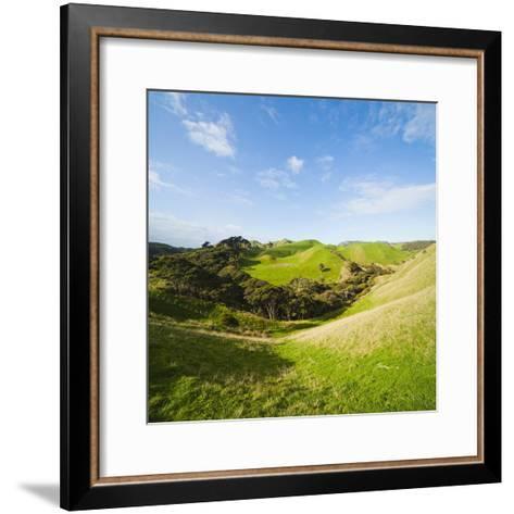Countryside on the Walk to Wharariki Beach-Matthew Williams-Ellis-Framed Art Print