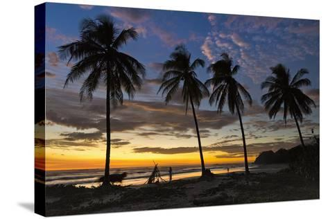 Palm Trees at Sunset on Playa Guiones Surfing Beach-Rob Francis-Stretched Canvas Print