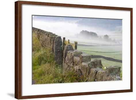 Stone Fence, Burnsall, Yorkshire Dales National Park, Yorkshire, England, United Kingdom, Europe-Miles Ertman-Framed Art Print