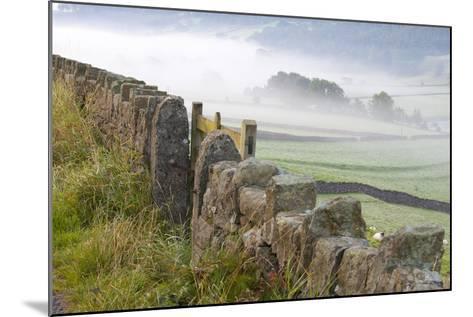Stone Fence, Burnsall, Yorkshire Dales National Park, Yorkshire, England, United Kingdom, Europe-Miles Ertman-Mounted Photographic Print