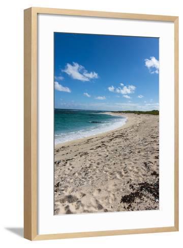 Remote White Sand Beach in Barbuda, Antigua and Barbuda, West Indies, Caribbean, Central America-Michael Runkel-Framed Art Print