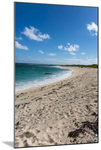 Remote White Sand Beach in Barbuda, Antigua and Barbuda, West Indies, Caribbean, Central America-Michael Runkel-Mounted Photographic Print