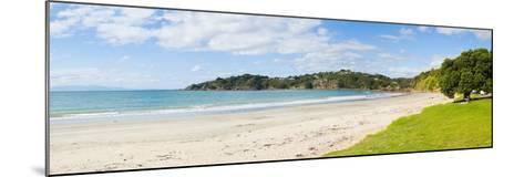 Oneroa Beach, Waiheke Island, Auckland, North Island, New Zealand, Pacific-Matthew Williams-Ellis-Mounted Photographic Print