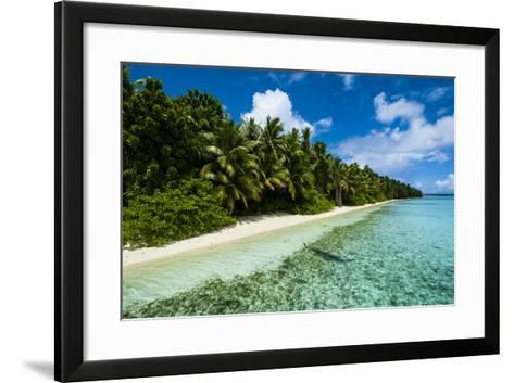 Paradise White Sand Beach in Turquoise Water on Ant Atoll, Pohnpei, Micronesia, Pacific-Michael Runkel-Framed Art Print