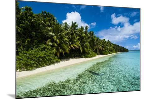 Paradise White Sand Beach in Turquoise Water on Ant Atoll, Pohnpei, Micronesia, Pacific-Michael Runkel-Mounted Photographic Print
