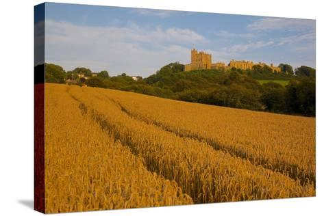 Bolsover Castle and Corn Field at Sunset, Bolsover, Derbyshire, England, United Kingdom, Europe-Frank Fell-Stretched Canvas Print