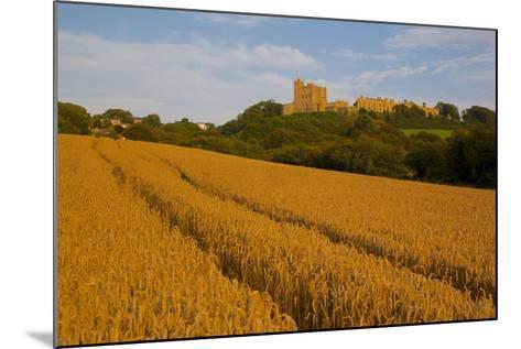 Bolsover Castle and Corn Field at Sunset, Bolsover, Derbyshire, England, United Kingdom, Europe-Frank Fell-Mounted Photographic Print
