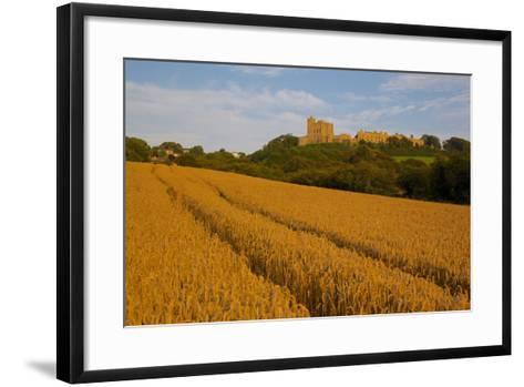 Bolsover Castle and Corn Field at Sunset, Bolsover, Derbyshire, England, United Kingdom, Europe-Frank Fell-Framed Art Print