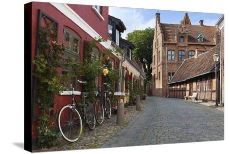 Cobblestone Alley in the Old Town, Ribe, Jutland, Denmark, Scandinavia, Europe-Stuart Black-Stretched Canvas Print