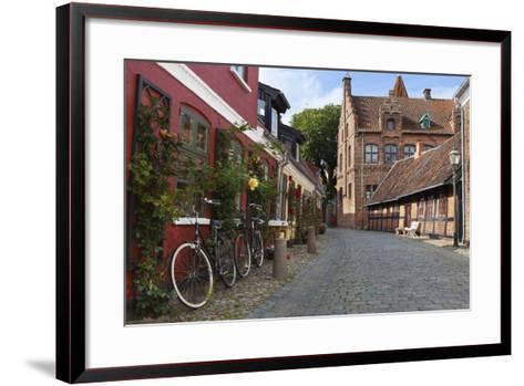 Cobblestone Alley in the Old Town, Ribe, Jutland, Denmark, Scandinavia, Europe-Stuart Black-Framed Art Print