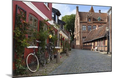 Cobblestone Alley in the Old Town, Ribe, Jutland, Denmark, Scandinavia, Europe-Stuart Black-Mounted Photographic Print