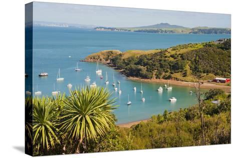 Sailing Boats on Waiheke Island, Auckland, North Island, New Zealand, Pacific-Matthew Williams-Ellis-Stretched Canvas Print