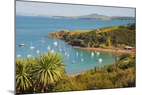 Sailing Boats on Waiheke Island, Auckland, North Island, New Zealand, Pacific-Matthew Williams-Ellis-Mounted Photographic Print