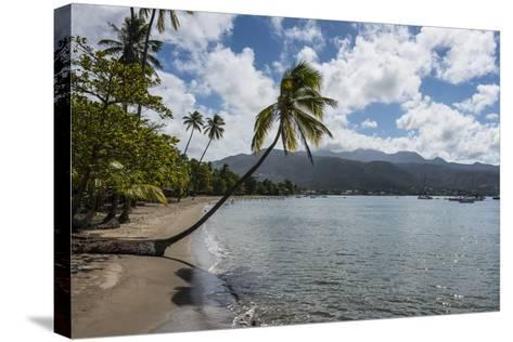 Beach in Prince Rupert Bay, Dominica, West Indies, Caribbean, Central America-Michael Runkel-Stretched Canvas Print