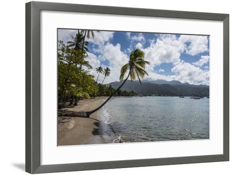 Beach in Prince Rupert Bay, Dominica, West Indies, Caribbean, Central America-Michael Runkel-Framed Art Print