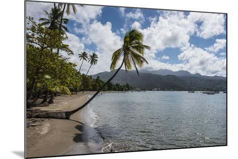 Beach in Prince Rupert Bay, Dominica, West Indies, Caribbean, Central America-Michael Runkel-Mounted Photographic Print