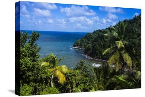 Pagua Bay in Dominica, West Indies, Caribbean, Central America-Michael Runkel-Stretched Canvas Print