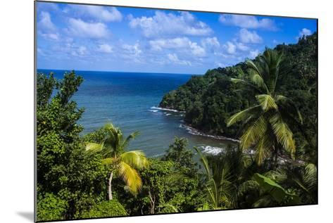 Pagua Bay in Dominica, West Indies, Caribbean, Central America-Michael Runkel-Mounted Photographic Print