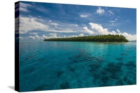 Little Islet in the Ant Atoll, Pohnpei, Micronesia, Pacific-Michael Runkel-Stretched Canvas Print