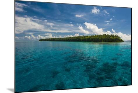 Little Islet in the Ant Atoll, Pohnpei, Micronesia, Pacific-Michael Runkel-Mounted Photographic Print