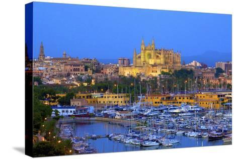 Cathedral and Harbour, Palma, Mallorca, Spain, Europe-Neil Farrin-Stretched Canvas Print