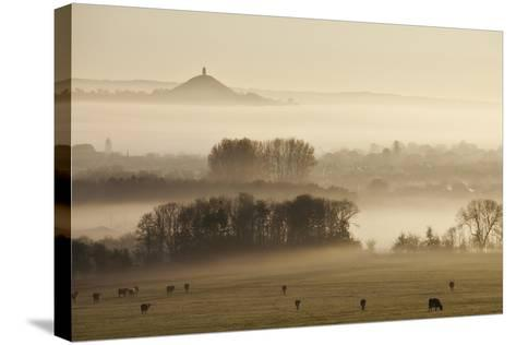 View Towards Glastonbury Tor from Walton Hill at Dawn, Somerset Levels, Somerset, England, UK-Guy Edwardes-Stretched Canvas Print